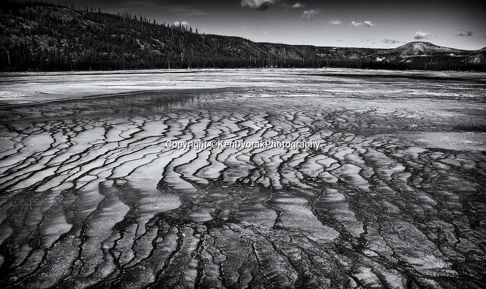 Teton/Yellowstone '13<br /> edited 1/27/14<br /> converted to B&W 1/27/14 printed