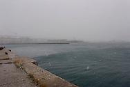 Trieste dal vecchio porto