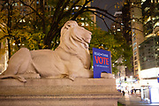 New York, NY - 3 November 2020. New York City anticipates presidential election results as polls in some states close. Fortitude, the statuary lion on the north end of the steps of the New York Public Library, carries a book asking people to read, think, and vote.