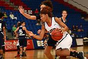 2014 FAU Women's Basketball vs Rice