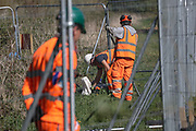 "HS2 site workers are seen working at HS2 site in Crackley Woods staying not home and close to one another against Social Distance, which is one of Public Health England (PHE) Guidance rule that aims to curb Coronavirus pandemic outbreak in Britain on Tuesday, April 14, 2020. (Photo/Vudi Xhymshiti)<br /> ""These people can bring Covid19 and infect the entire population in Coventry,"" said an eyewitness. Victoria, a concerned citizen said that quote: ""they come from other countries and parts of Britain, they shop here, they sleep in our hotels and they don't keep the distance, they're putting us all at risk."""