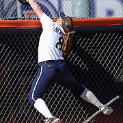 3/1/2013 - Fullerton, CA: California's  softball player #8 Danielle Henderson snags a foul ball over the dugout in Friday afternoon's game.  Photo by Bryan Lynn