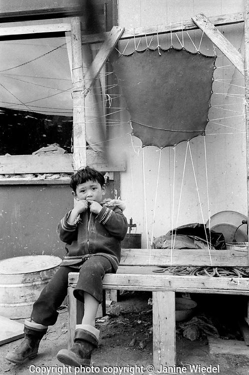 Young boy in front of stretched seal skin  in the Canadian Arctic settlement of Pangnirtung in the territory of Nunavut (North West Territories) 1973