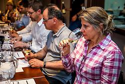 Curso Intensivo de Vinhos promovido pela Associação Brasileira de Sommeliers (ABS-RS) ocorrido na Vinhos do Mundo. Foto: Marcos Nagelstein/ Agência Preview