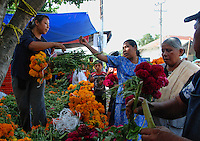 """MEXICO, Veracruz, Tantoyuca, Oct 27- Nov 4, 2009. .089 . The flower business is brisk in Santa Maria de Ixcatepec, as citizens buy orange """"cempasuchil,"""" or """"20-petal flower"""" and the red """"mano de leon,"""" the lion's paw. """"Xantolo,"""" the Nahuatl word for """"Santos,"""" or holy, marks a week-long period during which the whole Huasteca region of northern Veracruz state prepares for """"Dia de los Muertos,"""" the Day of the Dead. For children on the nights of October 31st and adults on November 1st, there is costumed dancing in the streets, and a carnival atmosphere, while Mexican families also honor the yearly return of the souls of their relatives at home and in the graveyards, with flower-bedecked altars and the foods their loved ones preferred in life. Photographs for HOY by Jay Dunn."""