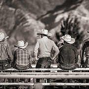 SMALL TOWN RODEO