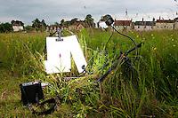 Southern marsh orchid set on a village green, Dactylorhiza praetermissa, North Essex, England, Europe