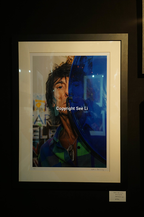 Chelsea Old Town Hall.London,England,UK. 26th April 2017. Ronnie Blues by Nathan Browning exhibition at Chelsea Art Fair - press & photocall of King's Road Revolution Where Art meets Music at Chelsea Old Town Hall. by See Li