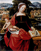 Virgin and Child' Jesus on Mary's lap leans to take grapes from dish while Mary looks at illuminated devotional book. Anonymous: 16th century. Oil on wood.
