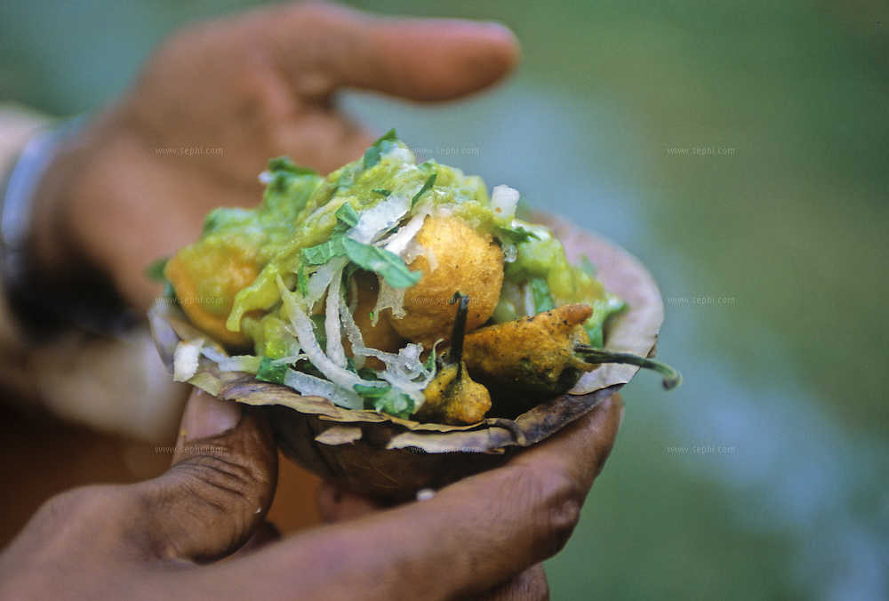 A serving of Ram Ladoo (made of Split Green gram) and mirchi pakora (fried green chilli peppers) topped with radish and mint chutney in Lodi garden, New Delhi.