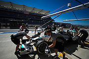 October 30-November 2 : United States Grand Prix 2014, Nico Rosberg  (GER), Mercedes Petronas