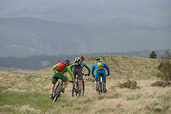 Rear view of three mountain bikers riding cycle on grass