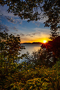 Maple trees frame a view of the sun setting over the Salish Sea as captured from Chuckanut Drive, a scenic road that connects Bow and Bellingham, Washington. Lummi and Orcas islands are visible in the background. Dogfish Point is visible immediately beneath the sun.