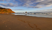 beach Near Nelson, New Zealand