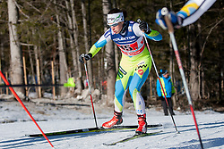 Vesna Fabjan (SLO) during the ladies team sprint race at FIS Cross Country World Cup Planica 2016, on January 17, 2016 at Planica, Slovenia. Photo By Urban Urbanc / Sportida
