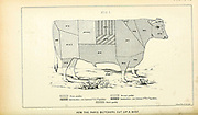 Beef cuts chart of Paris Butchers from Cattle and dairy farming. Published 1887 by Govt. Print. Off. in Washington. United States. Bureau of Foreign Commerce (1854-1903)