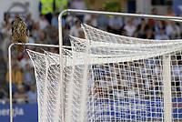 Fotball<br /> EM-kvalifisering<br /> 06.06.2007<br /> Finland v Belgia<br /> Foto: Dppi/Digitalsport<br /> NORWAY ONLY<br /> <br /> FOOTBALL - EUROPEAN CHAMPIONSHIP 2008 - QUALIFYING - GROUP A - FINLAND v BELGIUM - 06/06/2007 - OWL ILLUSTRATION DURING THE MATCH<br /> <br /> En ugle har satt seg oppe på det ene målet