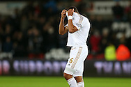 Ashley Williams, the Swansea city captain shows his relief at the end of the match as his team holds on to win the game 1-0. Barclays Premier league match, Swansea city v West Bromwich Albion at the Liberty Stadium in Swansea, South Wales  on Boxing Day Saturday 26th December 2015.<br /> pic by  Andrew Orchard, Andrew Orchard sports photography.