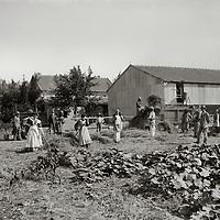 Zionist Settlement