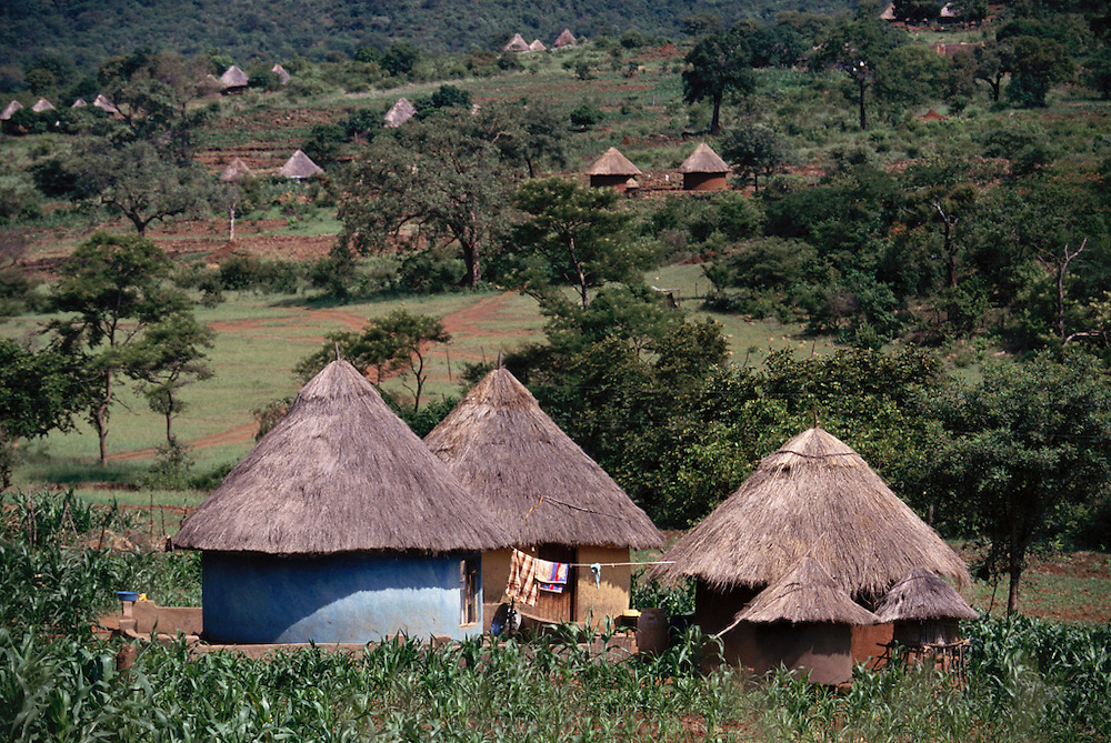 Typical round homes in Ha-Matiyane Village, Venda (North Transvaal) South Africa.
