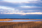 Beautiful golden landscape created by the setting sun.  Bombay Hook NWR, Delaware