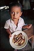 Man Eating Bugs: Peru