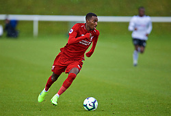 DERBY, ENGLAND - Friday, March 8, 2019: Liverpool's Rafael Camacho during the FA Premier League 2 Division 1 match between Derby County FC Under-23's and Liverpool FC Under-23's at the Derby County FC Training Centre. (Pic by David Rawcliffe/Propaganda)