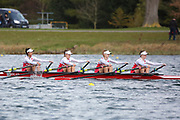 WJ16 4x<br /> <br /> Junior Sculling Head 2019<br /> <br /> To purchase this photo, or to see pricing information for Prints and Downloads, click the blue 'Add to Cart' button at the top-right of the page.