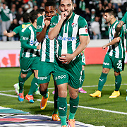 Bursaspor's Volkan Sen (F) celebrate his goal with team mate during the Turkish soccer super league match Bursaspor between Fenerbahce at the Ataturk Stadium in Bursa Turkey on Monday, 24 November 2014. Photo by Aykut AKICI/TURKPIX