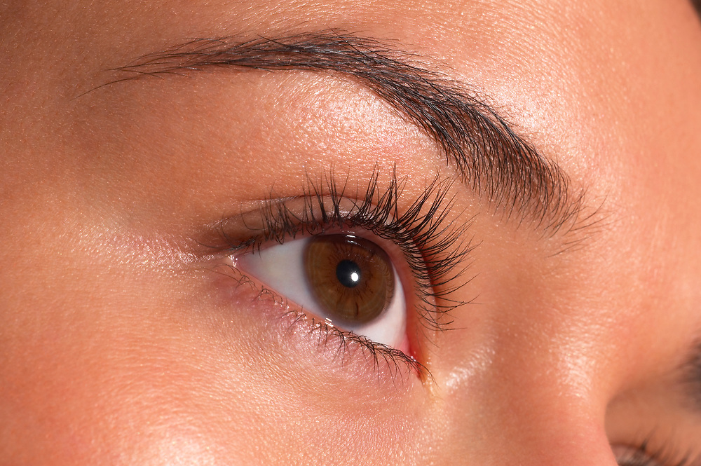Close up of woman's brown eye and eyebrow