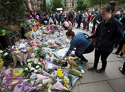 May 24, 2017 - Manchester, United Kingdom - A woman places flowers at Albert Square in Manchester among the growing amount of floral tributes left for the victims of the Manchester terror attack . (Credit Image: © Stephen Lock/i-Images via ZUMA Press)