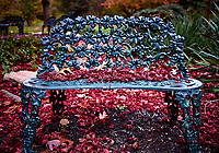 Red malple leaves on a bench. Backyard autumn nature. Image taken with a Leica T camera and 23 mm f/2 lens (ISO 100, 23 mm, f/2, 1/60 sec)