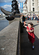 Little girl tries to catch a pigeon which is too quick for her. The South Bank is a significant arts and entertainment district, and home to an endless list of activities for Londoners, visitors and tourists alike.