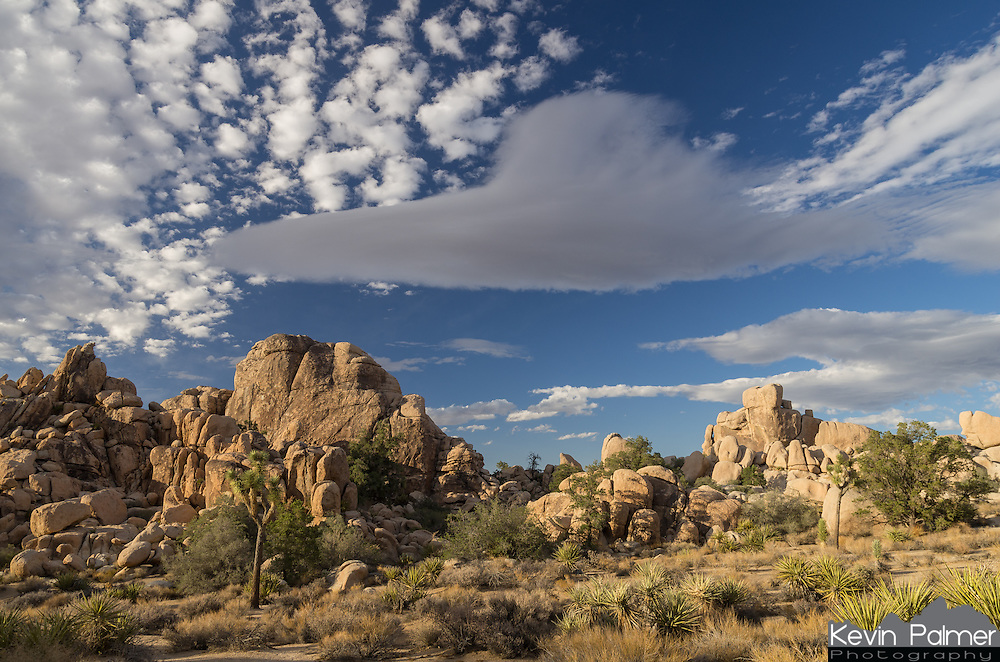 It is no wonder that lenticular clouds often get mistaken for UFO's. This kind of cloud forms often in the California deserts as strong winds lifts air up and over mountain ranges. The air then condenses to form a cloud that stays in the same area for quite awhile.<br /> <br /> Date Taken: August 19, 2014