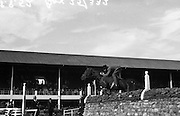 Morrison, Captain H, Aghadowey, Co. Derry.  'Wigmore Freedom' at RDS Horse Show..08/08/1952
