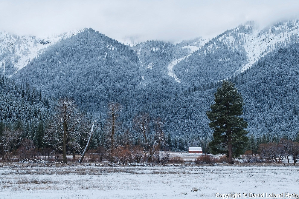 Grizzly Ridge and Palmaz Shed Across Genesee Valley Ranch, California Mountains, Winter, Fresh Snow, Cottonwoods, Fir Forest, Snowy Mountains, California Barns, Sierra Nevada Mountains