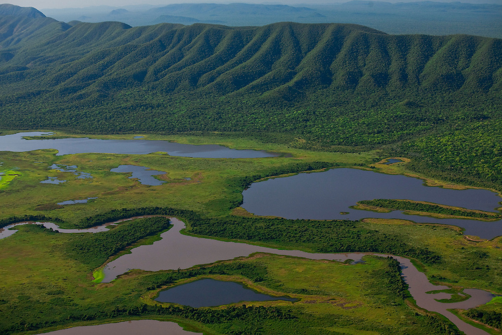 Pocone_MT, Brasil...Parque Nacional do Pantanal em Pocone, Mato Grosso...Pantanal National Park in Pocone, Mato Grosso...Foto: JOAO MARCOS ROSA  / NITRO..