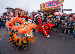 © Licensed to London News Pictures. 09/02/2019. Bristol, UK. Lion dancers at Chinese New Year celebrations for the year of the pig, at Wai Yee Hong Chinese supermarket in Eastville, Bristol. Photo credit: Simon Chapman/LNP