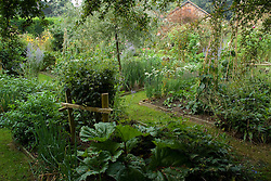 General view from the rear of the garden