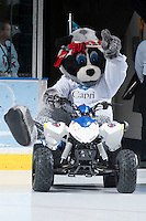 KELOWNA, CANADA - NOVEMBER 30: Rocky Racoon, the mascot of the Kelowna Rockets enters the ice on his Polaris Quad on November 30, 2013 at Prospera Place in Kelowna, British Columbia, Canada.   (Photo by Marissa Baecker/Shoot the Breeze)  ***  Local Caption  ***