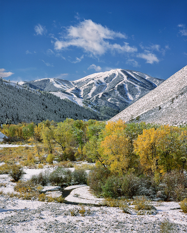 Limited Edition of 48 All Sizes<br /> First Snow Storm of the Season Blankets Sun Valley's Baldy Mountain and Contrasts Beautifully with the Autumn Colors of Trail Creek. Vertical Print
