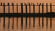 U Bein Bridge at sunset. It is a crossing that spans the Taungthaman Lake near Amarapura in Myanmar. The 1.2-kilometre bridge was built around 1850 and is believed to be the oldest and (once) longest teakwood bridge in the world
