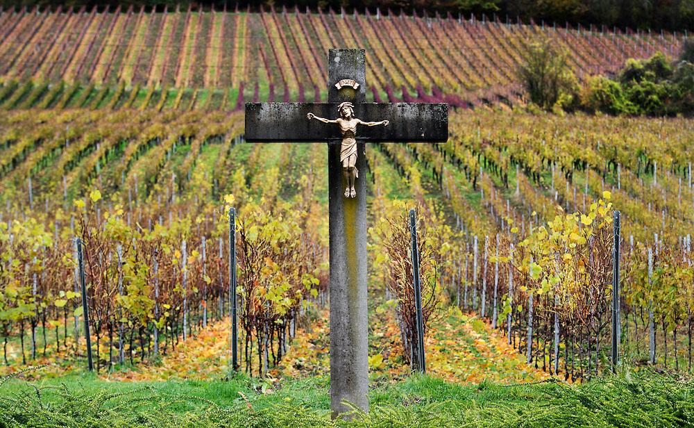 10.11.2016; Engelhof (D); Kreuz in Engelhof, Hohentengen am Hochrhein<br /> (Steffen Schmidt)
