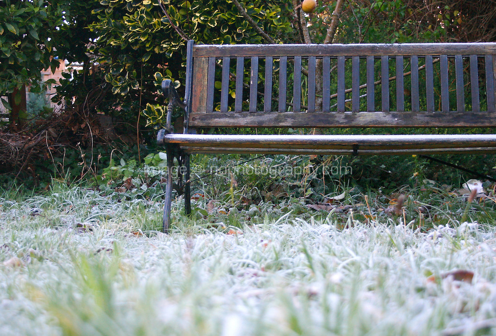 Frost covered grass and bench in an Irish garden