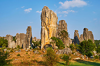 Chine, Yunnan, Foret de pierre de Shilin a Lunan // Limestone pinnacles in Shilin, Stone Forest, at Lunan, Yunnan, China