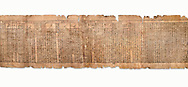 """Ancient Egyptian Book of the Dead papyrus - Spell 81a assuming the form of a lotus associated with the sun god, Iufankh's Book of the Dead, Ptolemaic period (332-30BC).Turin Egyptian Museum. White Background<br /> <br /> The spell reads """" I am a pure lotus that has ascended by the Sinlight and ia at Ra's nose. I spend my time shedding it on Horus. I am the pure lotus that ascended from the field"""". <br /> <br /> The translation of  Iuefankh's Book of the Dead papyrus by Richard Lepsius marked a truning point in the studies of ancient Egyptian funereal studies. .<br /> <br /> If you prefer to buy from our ALAMY PHOTO LIBRARY  Collection visit : https://www.alamy.com/portfolio/paul-williams-funkystock/ancient-egyptian-art-artefacts.html  . Type -   Turin   - into the LOWER SEARCH WITHIN GALLERY box. Refine search by adding background colour, subject etc<br /> <br /> Visit our ANCIENT WORLD PHOTO COLLECTIONS for more photos to download or buy as wall art prints https://funkystock.photoshelter.com/gallery-collection/Ancient-World-Art-Antiquities-Historic-Sites-Pictures-Images-of/C00006u26yqSkDOM"""