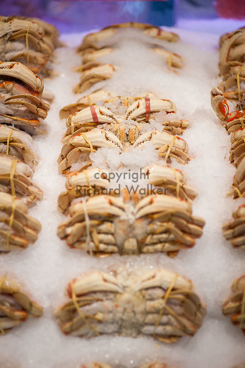 2018 MAY 15 - Crab for sale in Pike Place Market in Seattle, WA, USA. By Richard Walker