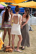 ANNA-LOUISE DOWNMAN, Veuve Clicquot Gold Cup, Cowdray Park, Midhurst. 21 July 2013