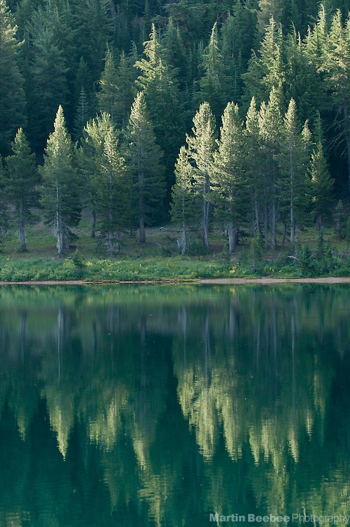 Pine trees are reflected in upper Highland Lake in the Eastern Sierra Nevada, Stanislaus National Forest, California