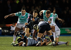 Cardiff Blues' Tomos Williams gets the ball away<br /> <br /> Photographer Simon King/Replay Images<br /> <br /> Guinness Pro14 Round 9 - Cardiff Blues v Connacht Rugby - Friday 24th November 2017 - Cardiff Arms Park - Cardiff<br /> <br /> World Copyright © 2017 Replay Images. All rights reserved. info@replayimages.co.uk - www.replayimages.co.uk